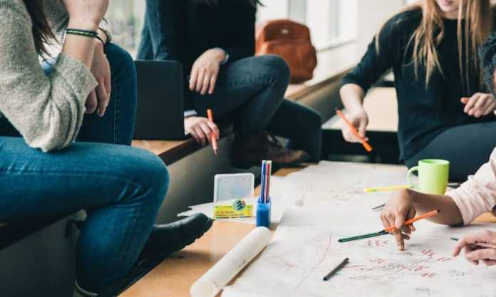 create a student europass cv